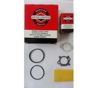 Ремкомплект карбюратора QTN 55 арт. 498260
